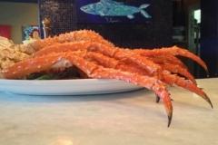 Jacksonville Seafood Blue Fish Jax (32)