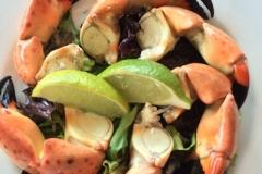 Jacksonville Seafood Blue Fish Jax (33)